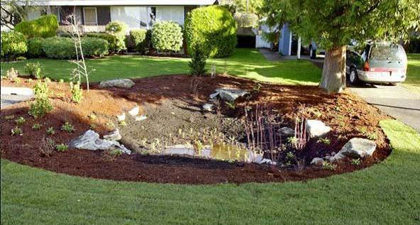 How To Do Your Own Landscaping Living On The Cheap
