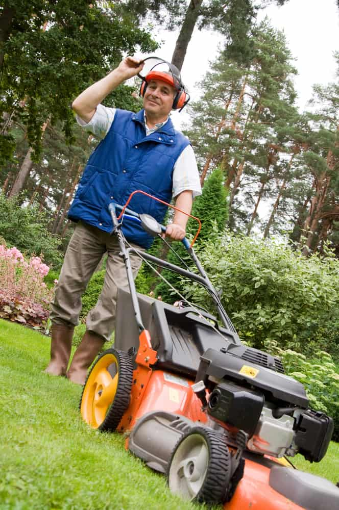 5 things to consider when buying a used lawn mower - Living