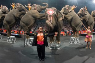 Baby 39 S First Circus Free Thanks To Ringling Bros