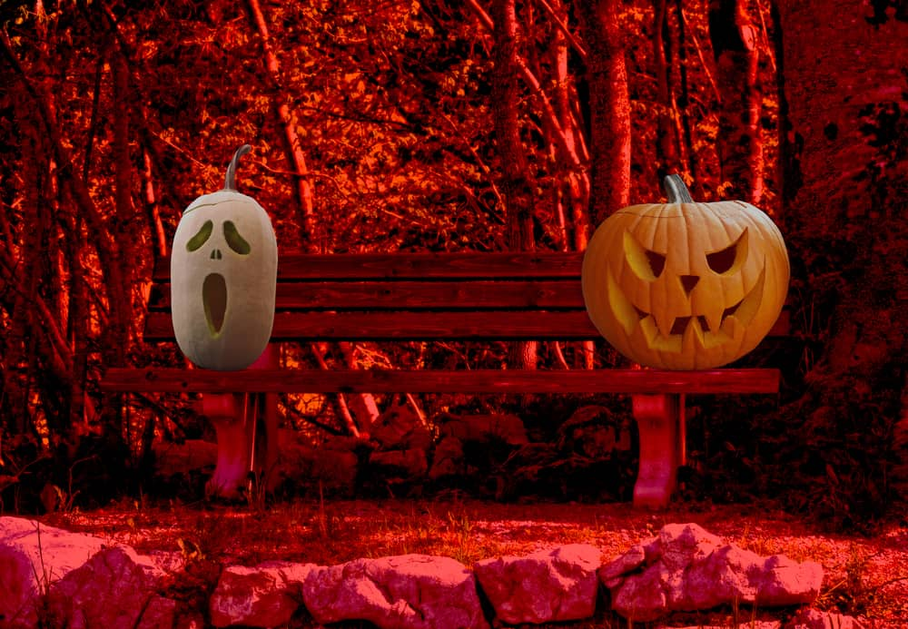 Free Pumpkin Stencils For Creative Halloween Carving Living On The