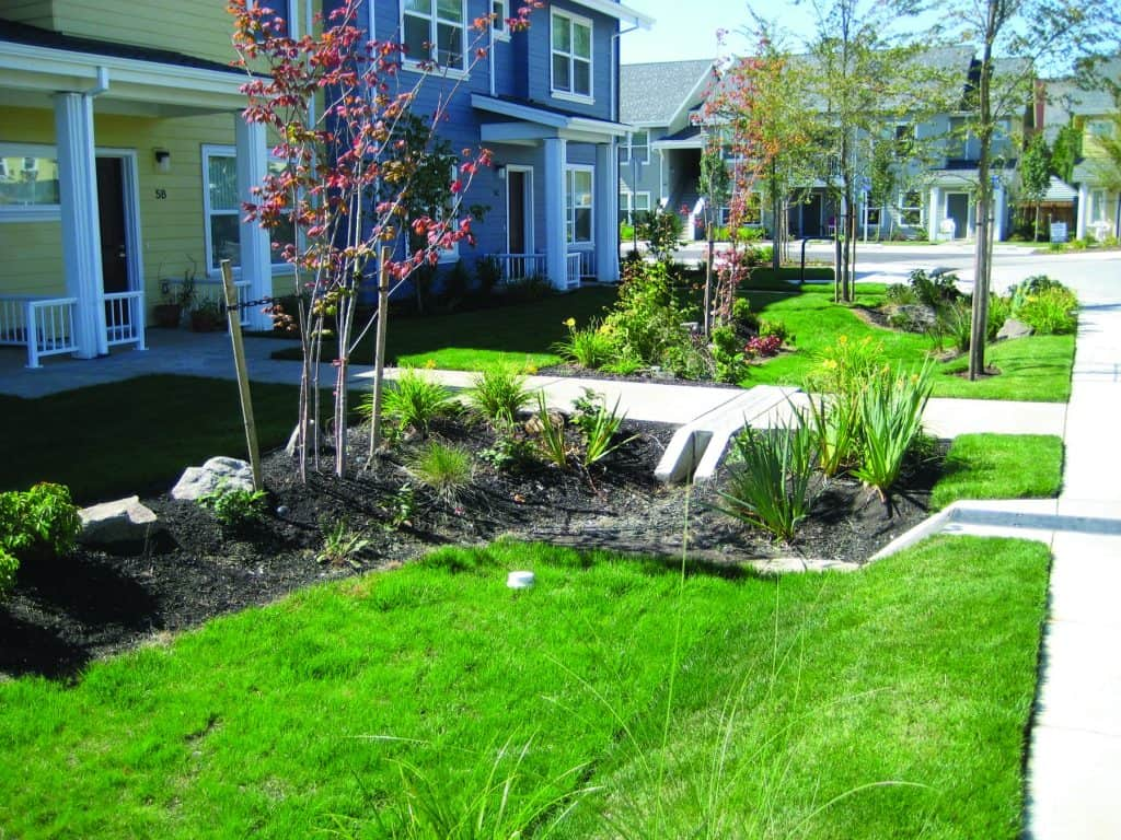 Oregon rain gardens redirect storm water photo by Candace Stoughton (CC2)