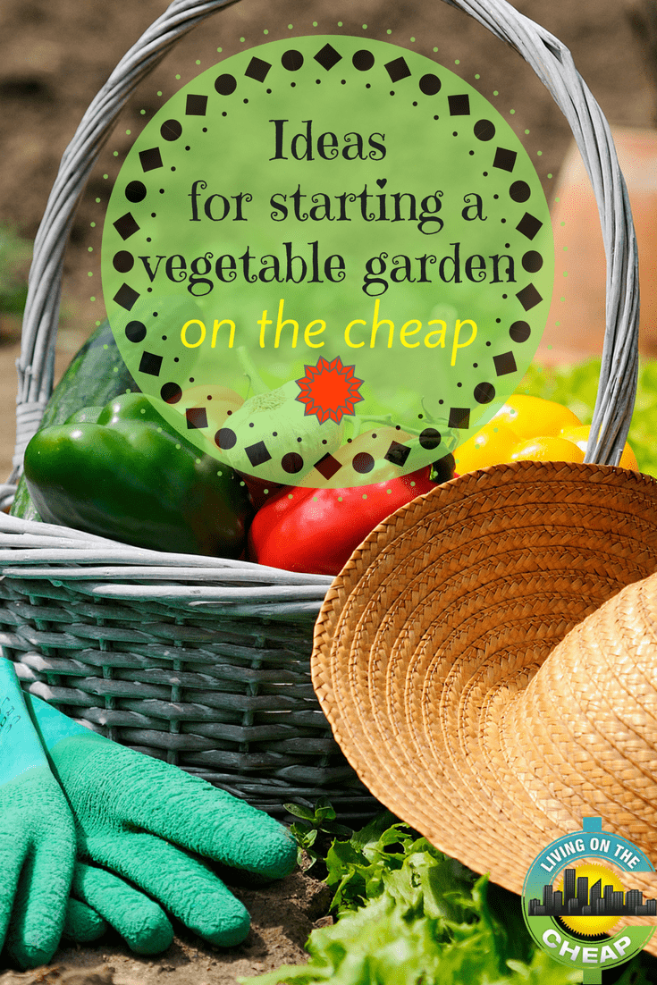 Start saving money by growing your own vegetables, save even more by starting a vegetable garden on the cheap