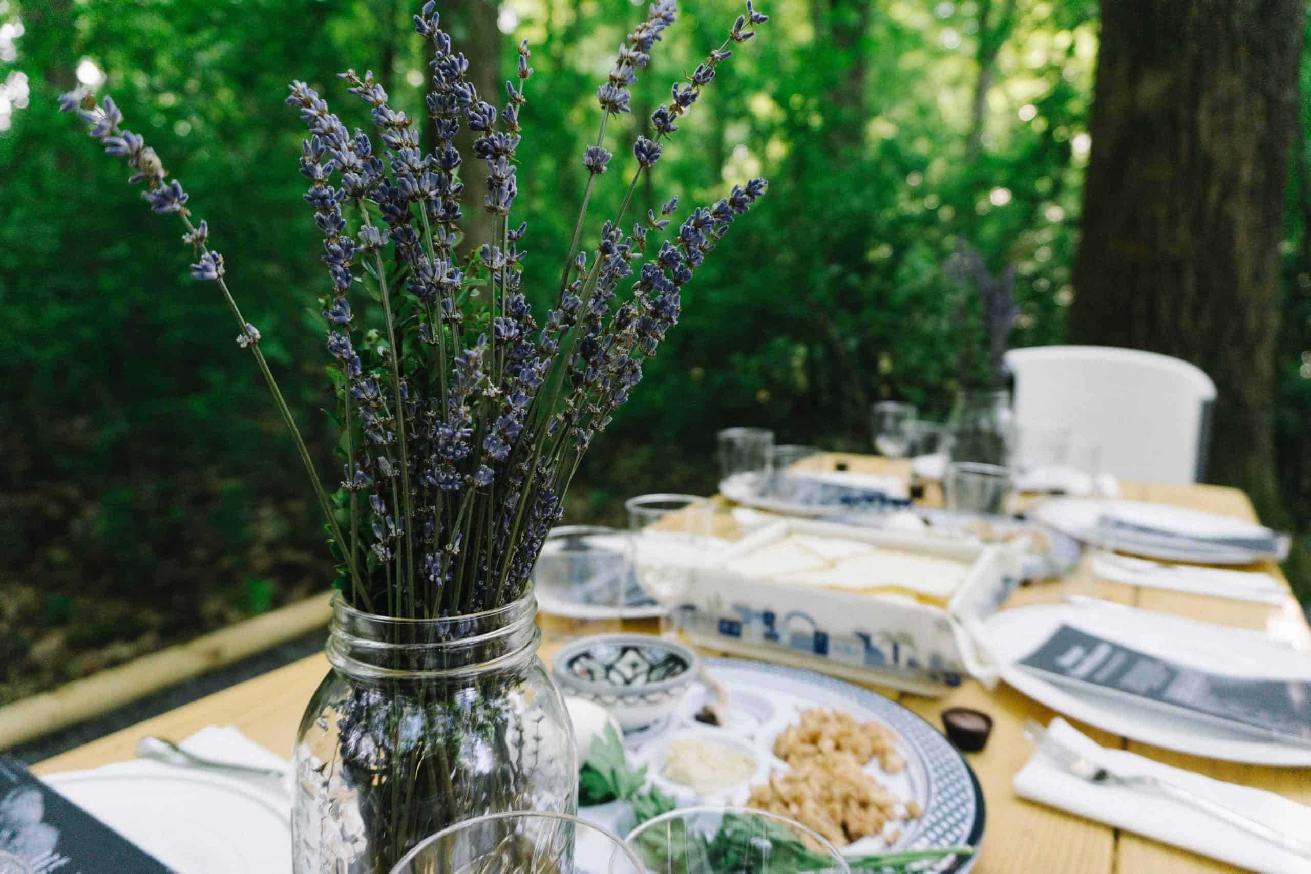 Passover recipes and crafts - purple flowers in a jar at outdoor seder with seder plate and matzah