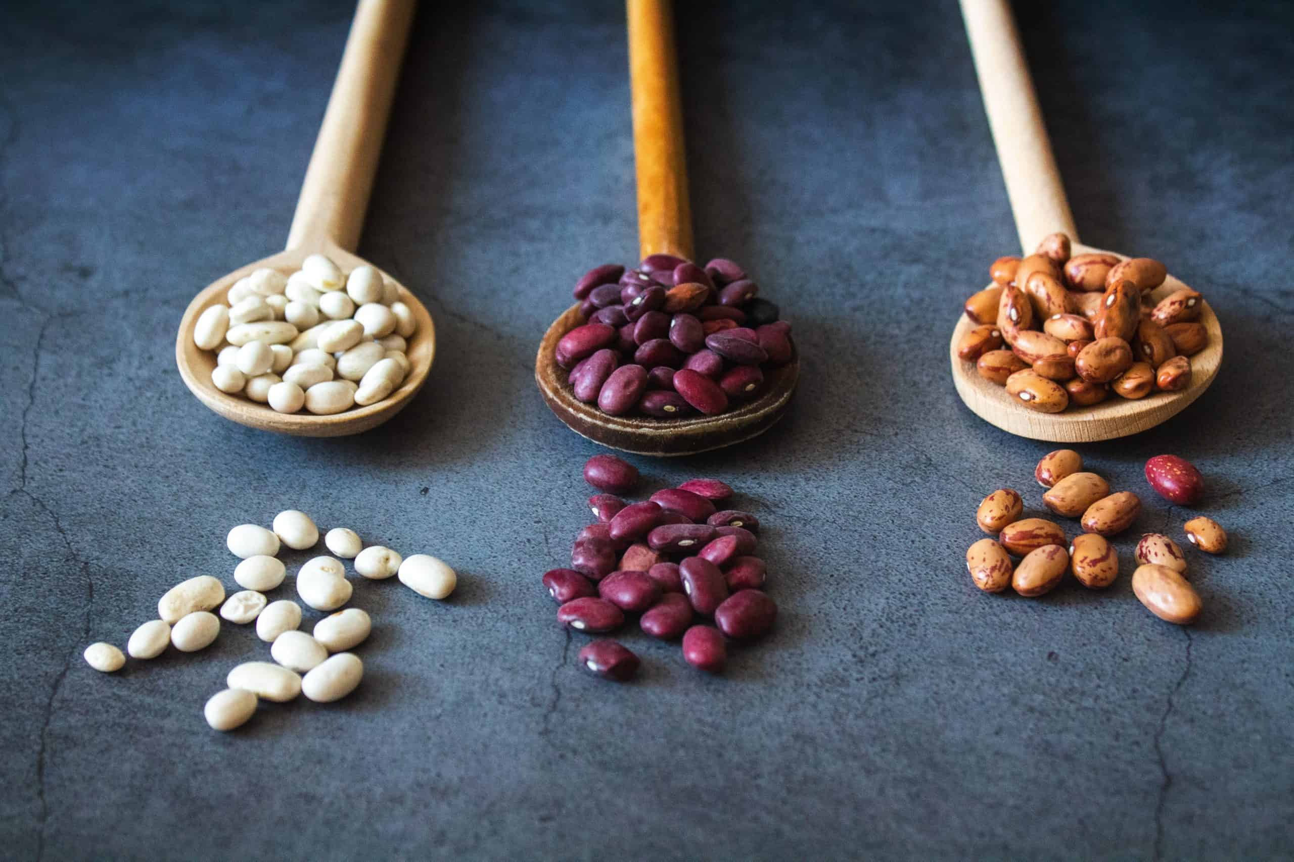 Eat healthy on a budget - cannelini, kidney and pinto beans on spoons